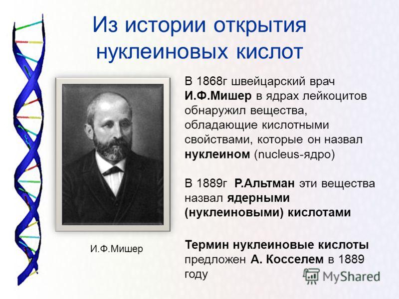 Из истории открытия нуклеиновых кислот В 1868г швейцарский врач И.Ф.Мишер в ядрах лейкоцитов обнаружил вещества, обладающие кислотными свойствами, которые он назвал нуклеином (nucleus-ядро) В 1889г Р.Альтман эти вещества назвал ядерными (нуклеиновыми