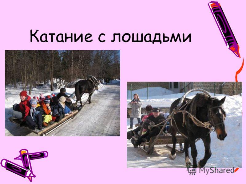 Катание с лошадьми