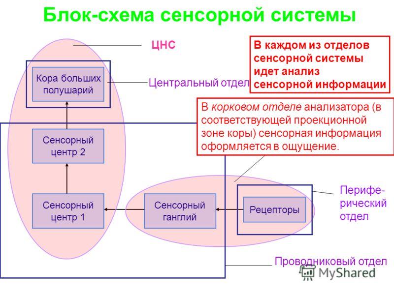 Блок-схема сенсорной
