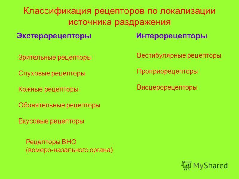Классификация рецепторов по локализации источника раздражения ЭкстерорецепторыИнтерорецепторы Зрительные рецепторы Слуховые рецепторы Кожные рецепторы Обонятельные рецепторы Вкусовые рецепторы Вестибулярные рецепторы Проприорецепторы Висцерорецепторы