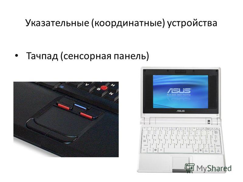 Указательные (координатные) устройства Тачпад (сенсорная панель)