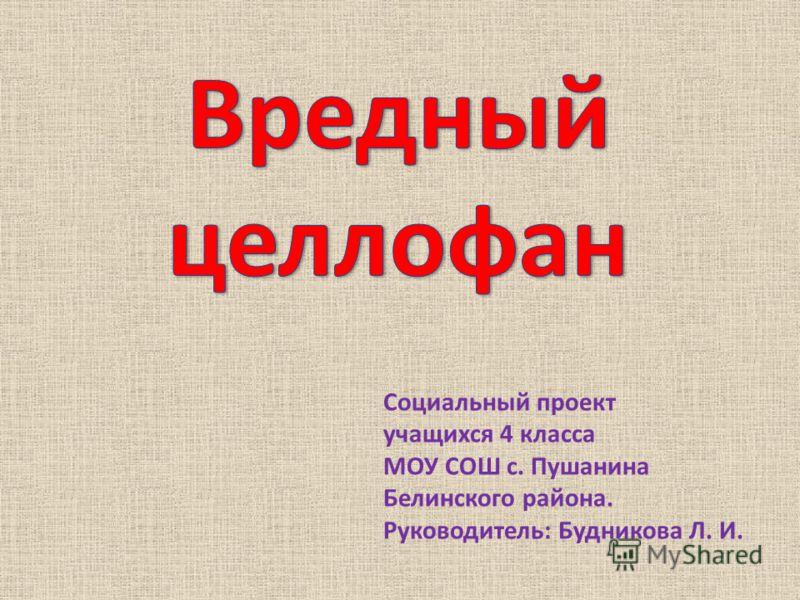 Социальный проект учащихся 4 класса МОУ СОШ с. Пушанина Белинского района. Руководитель: Будникова Л. И.