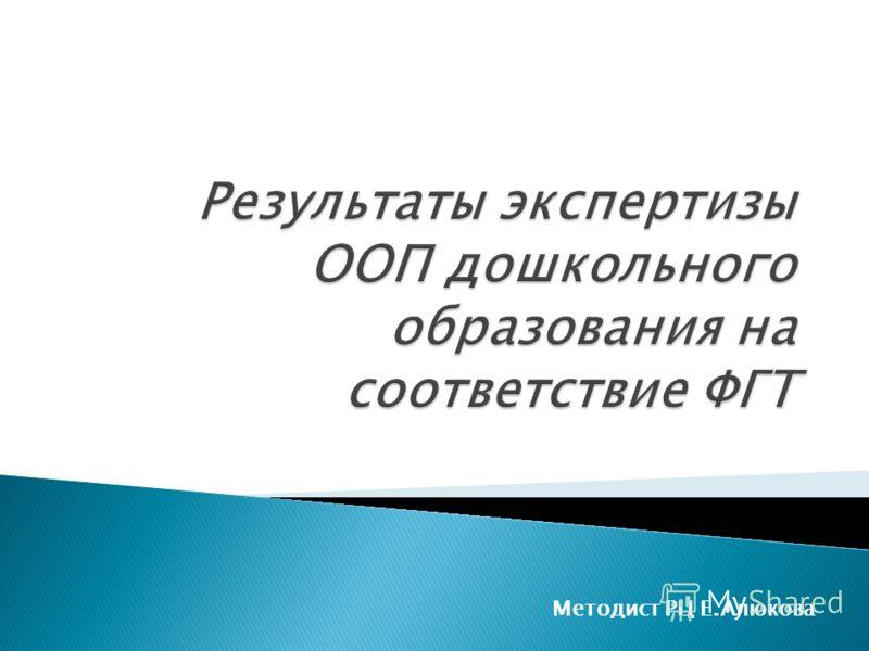 Методист РЦ Е.Алюкова
