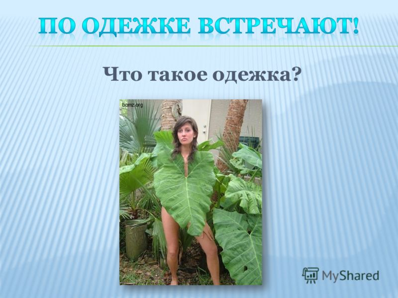 Что такое одежка?