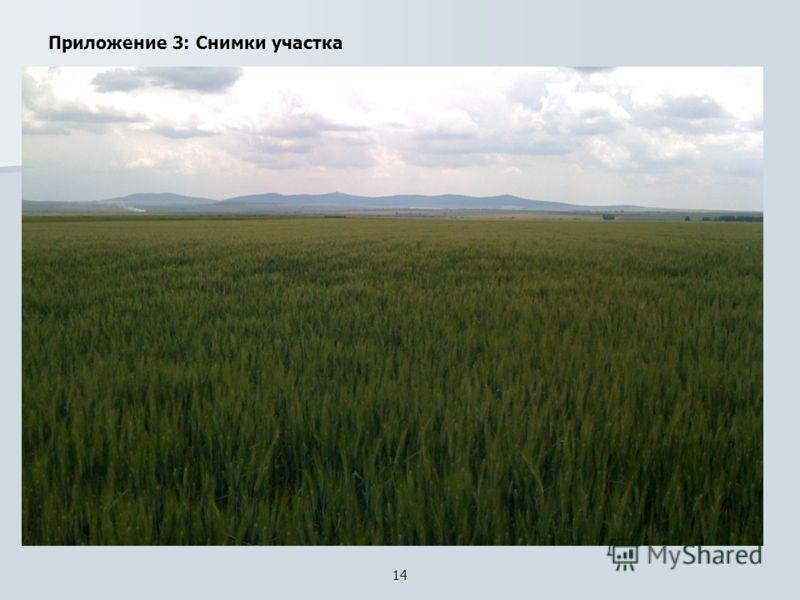14 Приложение 3: Снимки участка
