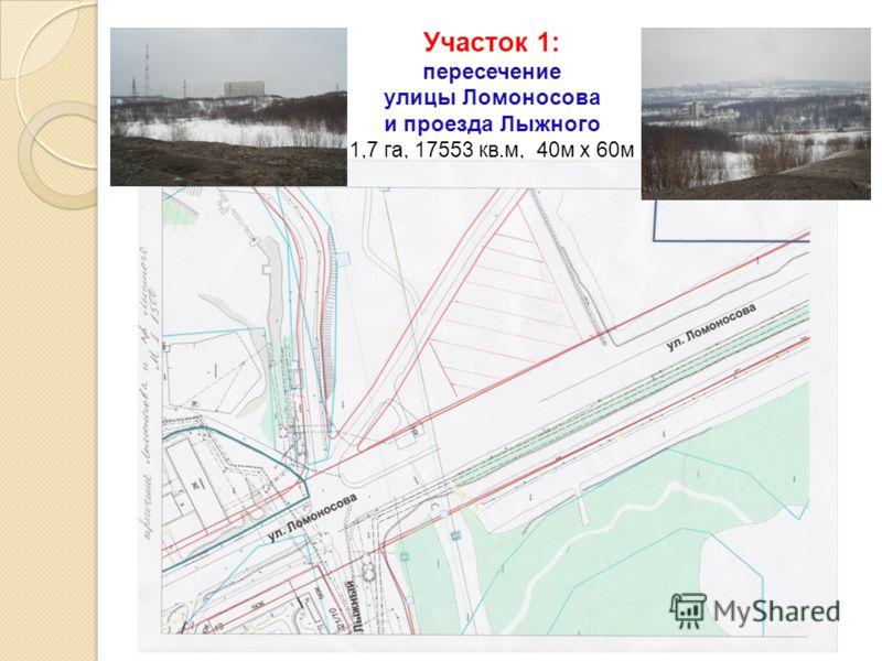 Участок 1: пересечение улицы Ломоносова и проезда Лыжного 1,7 га, 17553 кв.м, 40м х 60м