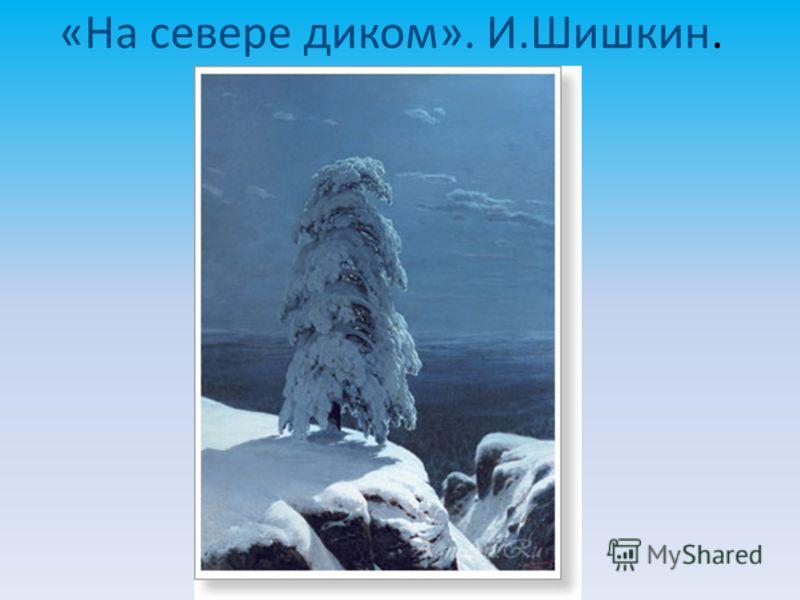 «На севере диком». И.Шишкин.