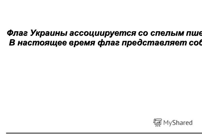 стр12 Флаг Украины ассоциируется со спелым пшеничным полем под голубым небом. Однако история флага уходит далеко в прошлое. По историческим сведениям им пользовались уже в 1410 году во время походов против крестоносцев. В настоящее время флаг предста