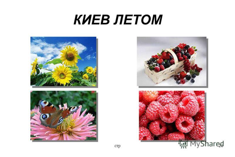 стр21 КИЕВ ЛЕТОМ