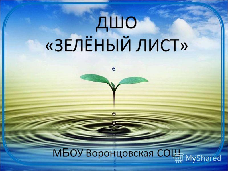 ДШО «ЗЕЛЁНЫЙ ЛИСТ» М Б ОУ Воронцовская СОШ