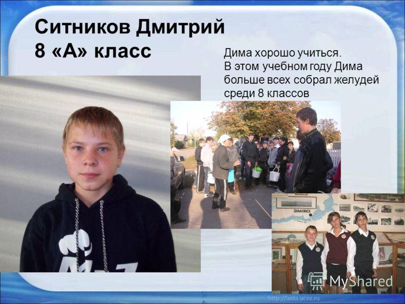 Ситников Дмитрий 8 «А» класс Дима хорошо учиться. В этом учебном году Дима больше всех собрал желудей среди 8 классов