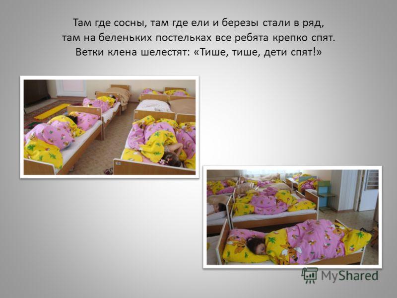 Там где сосны, там где ели и березы стали в ряд, там на беленьких постельках все ребята крепко спят. Ветки клена шелестят: «Тише, тише, дети спят!»