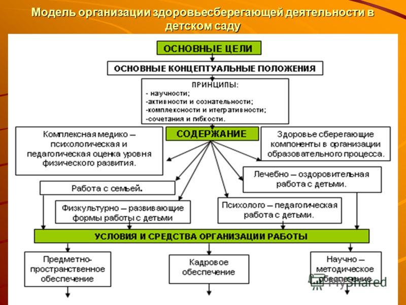 Модель организации здоровьесберегающей деятельности в детском саду
