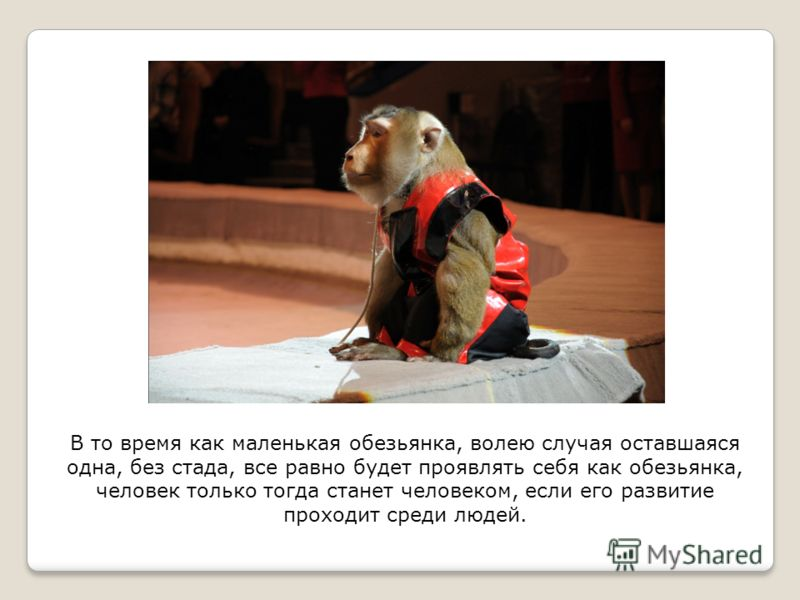 В то время как маленькая обезьянка, волею случая оставшаяся одна, без стада, все равно будет проявлять себя как обезьянка, человек только тогда станет человеком, если его развитие проходит среди людей.