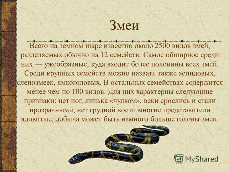 Змеи Всего на земном шаре известно около 2500 видов змей, разделяемых обычно на 12 семейств. Самое обширное среди них ужеобразные, куда входит более половины всех змей. Среди крупных семейств можно назвать также аспидовых, слепозмеек, ямкоголовых. В