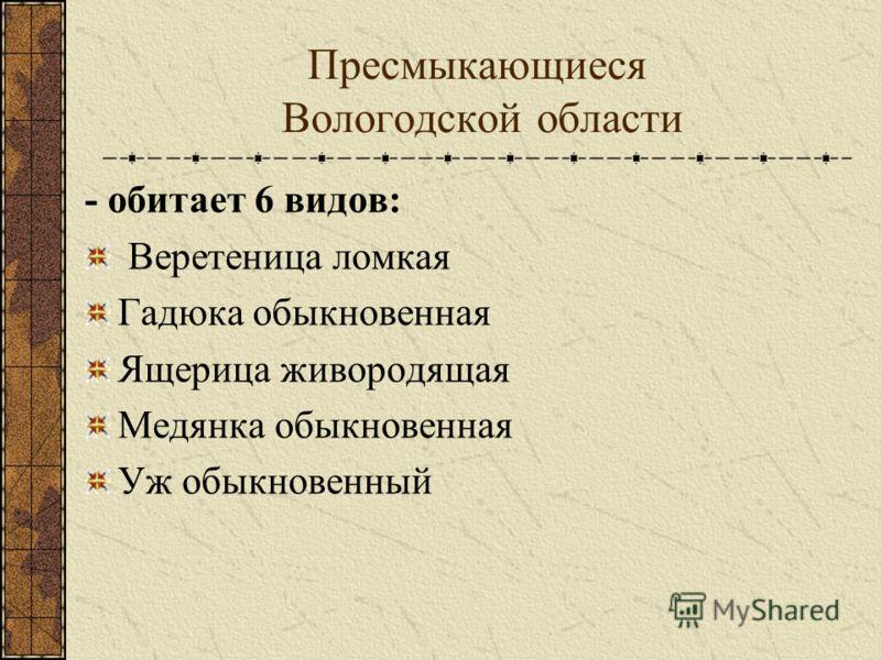 Пресмыкающиеся Вологодской области - обитает 6 видов: Веретеница ломкая Гадюка обыкновенная Ящерица живородящая Медянка обыкновенная Уж обыкновенный