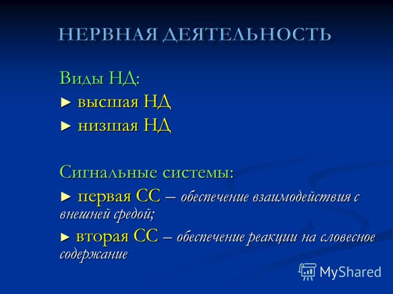 Виды НД: высшая НД высшая НД низшая НД низшая НД Сигнальные системы: первая СС – обеспечение взаимодействия с внешней средой; первая СС – обеспечение взаимодействия с внешней средой; вторая СС – обеспечение реакции на словесное содержание вторая СС –