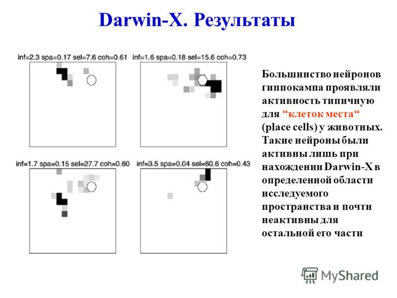 Большинство нейронов гиппокампа проявляли активность типичную для клеток места (place cells) у животных. Такие нейроны были активны лишь при нахождении Darwin-X в определенной области исследуемого пространства и почти неактивны для остальной его част