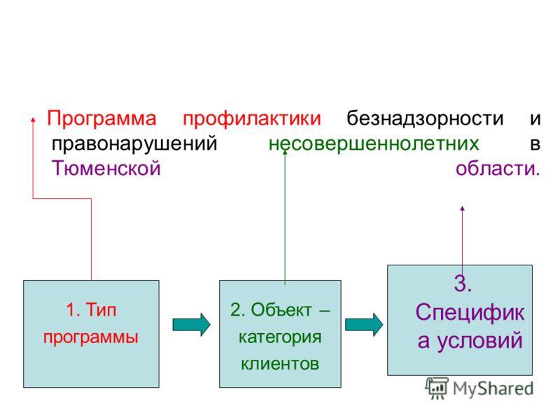 Программа профилактики безнадзорности и правонарушений несовершеннолетних в Тюменской области. 3. Специфик а условий 2. Объект – категория клиентов 1. Тип программы