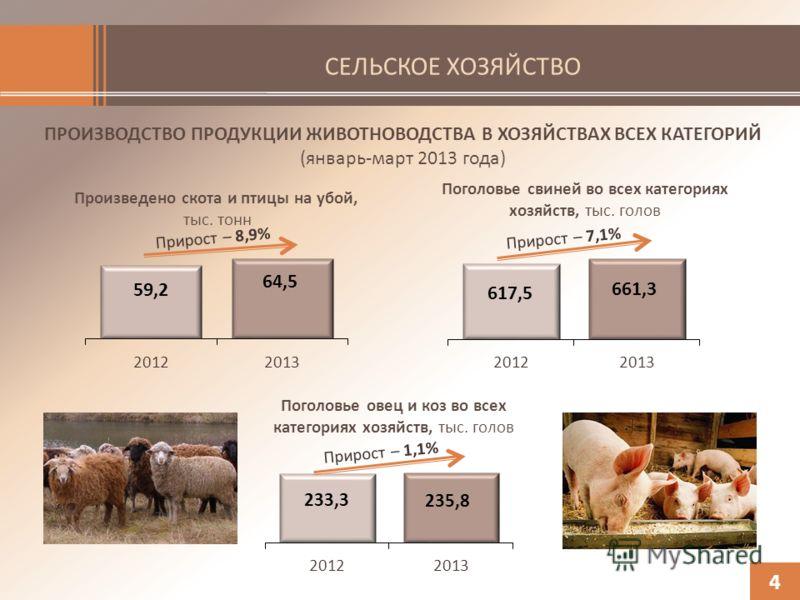 СЕЛЬСКОЕ ХОЗЯЙСТВО ПРОИЗВОДСТВО ПРОДУКЦИИ ЖИВОТНОВОДСТВА В ХОЗЯЙСТВАХ ВСЕХ КАТЕГОРИЙ (январь-март 2013 года) Произведено скота и птицы на убой, тыс. тонн 4 Поголовье овец и коз во всех категориях хозяйств, тыс. голов Поголовье свиней во всех категори
