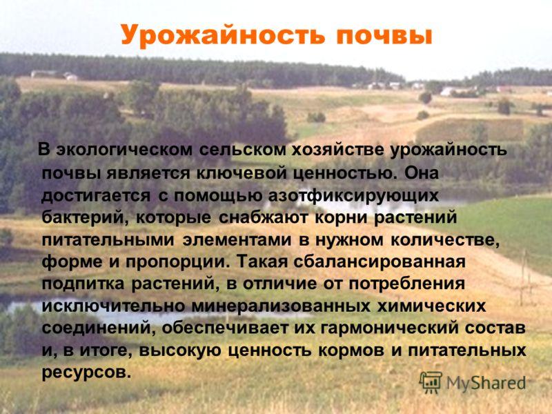 В экологическом сельском хозяйстве урожайность почвы является ключевой ценностью. Она достигается с помощью азотфиксирующих бактерий, которые снабжают корни растений питательными элементами в нужном количестве, форме и пропорции. Такая сбалансированн