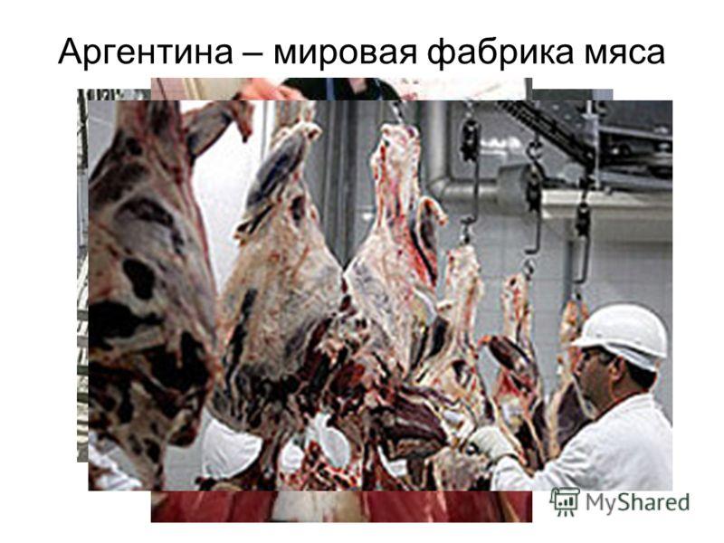 Аргентина – мировая фабрика мяса