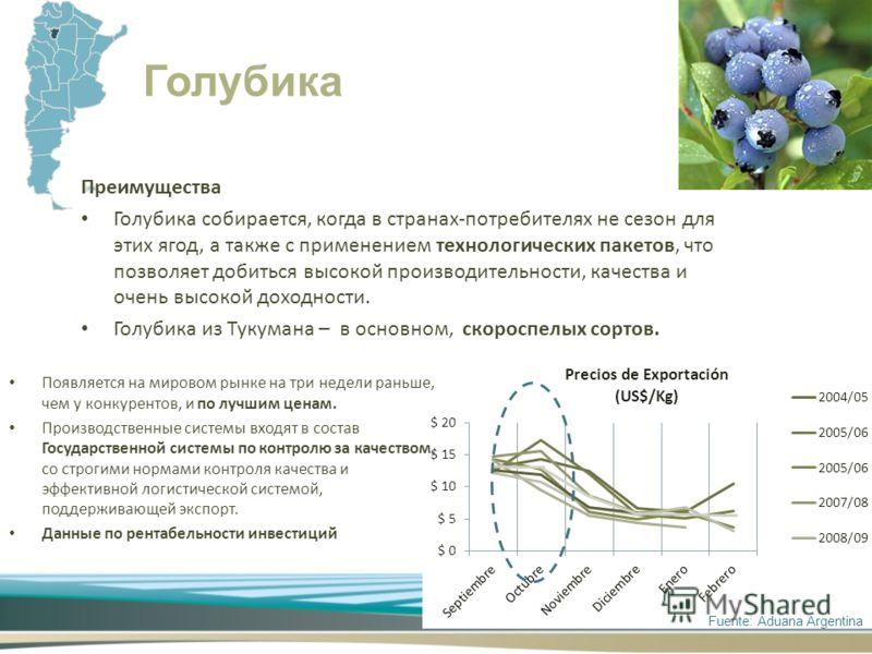 Преимущества Голубика собирается, когда в странах-потребителях не сезон для этих ягод, а также с применением технологических пакетов, что позволяет добиться высокой производительности, качества и очень высокой доходности. Голубика из Тукумана – в осн
