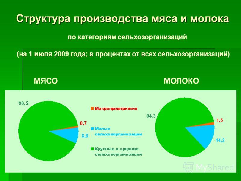 Структура производства мяса и молока по категориям сельхозорганизаций (на 1 июля 2009 года; в процентах от всех сельхозорганизаций) МЯСОМОЛОКО