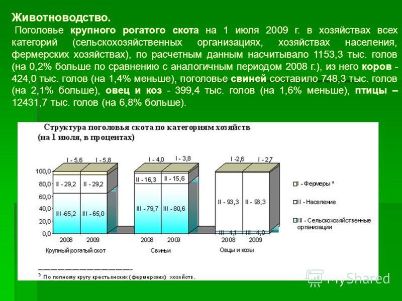 Животноводство. Поголовье крупного рогатого скота на 1 июля 2009 г. в хозяйствах всех категорий (сельскохозяйственных организациях, хозяйствах населения, фермерских хозяйствах), по расчетным данным насчитывало 1153,3 тыс. голов (на 0,2% больше по сра