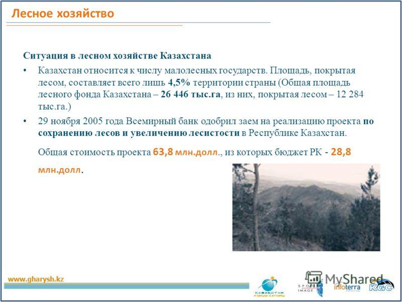 Лесное хозяйство Ситуация в лесном хозяйстве Казахстана Казахстан относится к числу малолесных государств. Площадь, покрытая лесом, составляет всего лишь 4,5% территории страны (Общая площадь лесного фонда Казахстана – 26 446 тыс.га, из них, покрытая