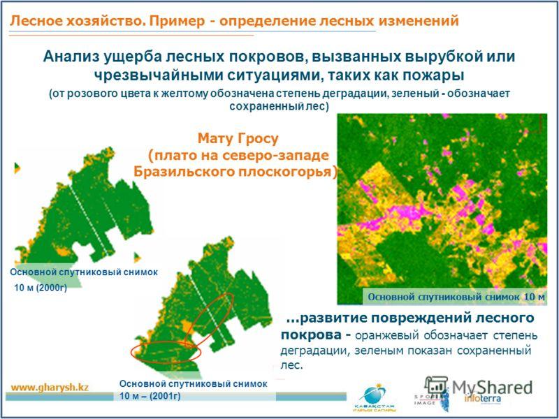 Лесное хозяйство. Пример - определение лесных изменений …развитие повреждений лесного покрова - оранжевый обозначает степень деградации, зеленым показан сохраненный лес. Анализ ущерба лесных покровов, вызванных вырубкой или чрезвычайными ситуациями,