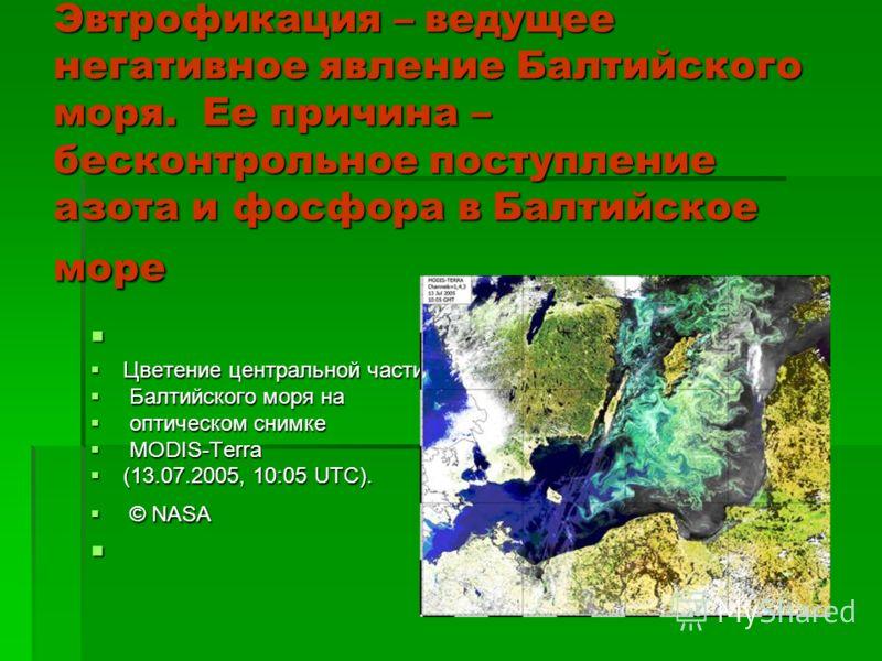 Эвтрофикация – ведущее негативное явление Балтийского моря. Ее причина – бесконтрольное поступление азота и фосфора в Балтийское море Цветение центральной части Цветение центральной части Балтийского моря на Балтийского моря на оптическом снимке опти
