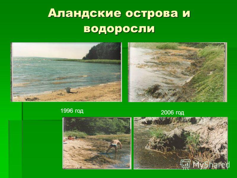 Аландские острова и водоросли 1996 год 2006 год