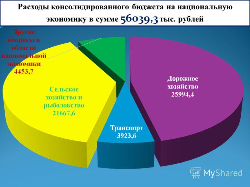 Расходы консолидированного бюджета на национальную экономику в сумме 56039,3 тыс. рублей