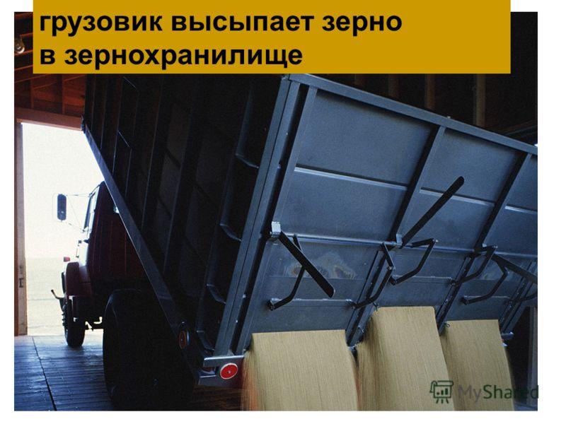 грузовик высыпает зерно в зернохранилище