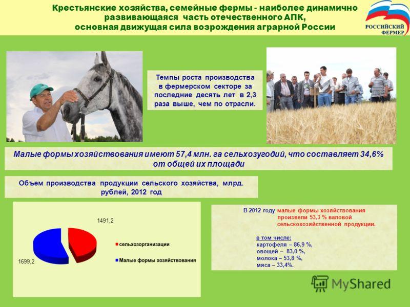 Крестьянские хозяйства, семейные фермы - наиболее динамично развивающаяся часть отечественного АПК, основная движущая сила возрождения аграрной России Темпы роста производства в фермерском секторе за последние десять лет в 2,3 раза выше, чем по отрас