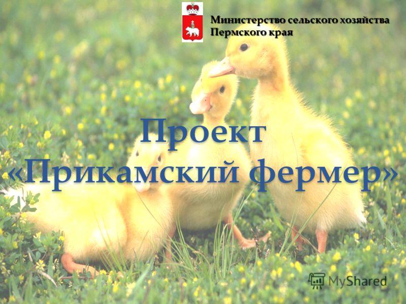 Проект «Прикамский фермер» Министерство сельского хозяйства Пермского края