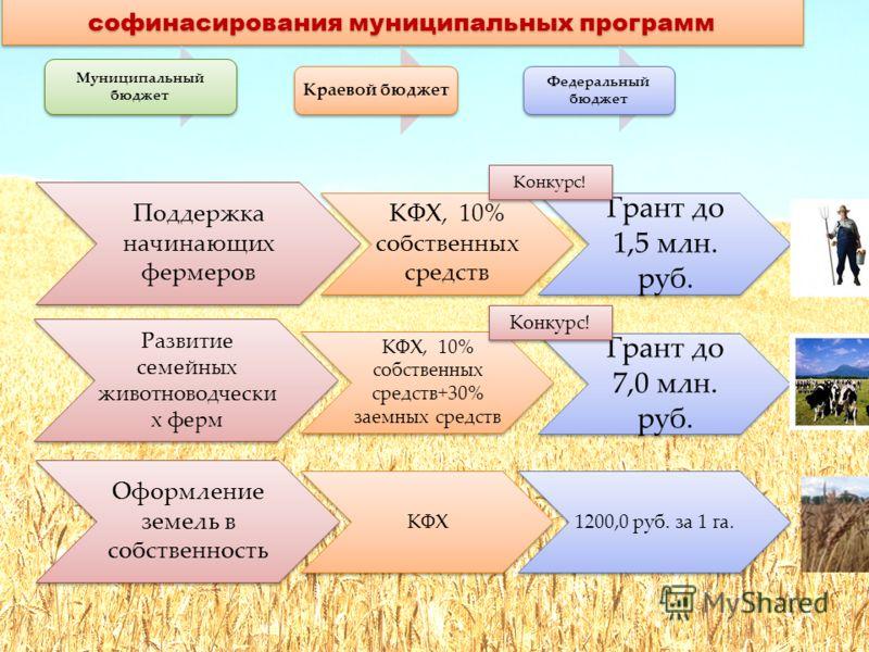 Механизмы поддержки малых форм в рамках софинасирования муниципальных программ Муниципальный бюджет Краевой бюджет Федеральный бюджет Поддержка начинающих фермеров КФХ, 10% собственных средств Грант до 1,5 млн. руб. Развитие семейных животноводчески