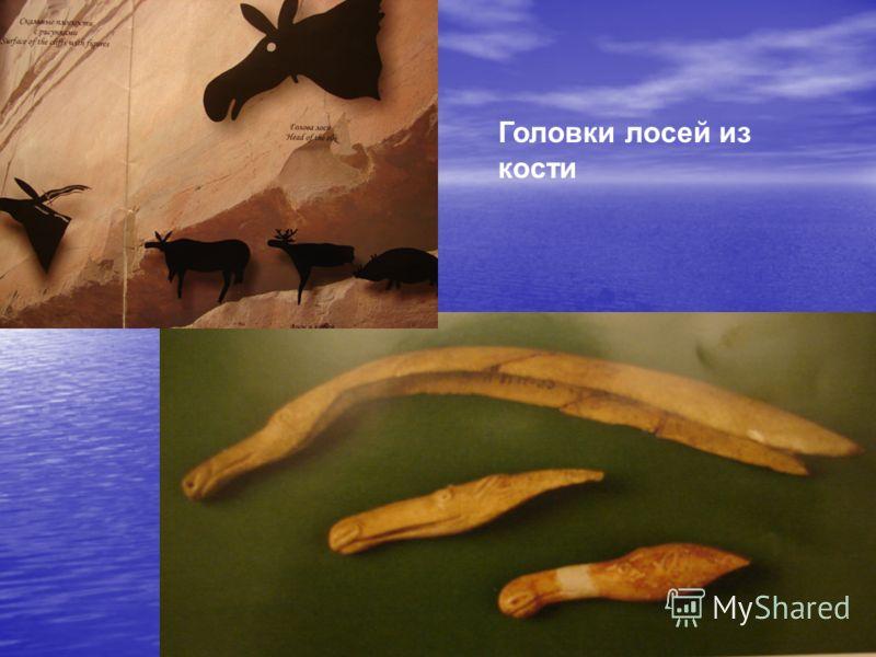 Головки лосей из кости