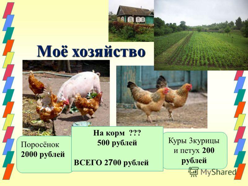Моё хозяйство Моё хозяйство Поросёнок 2000 рублей Куры 3курицы и петух 200 рублей На корм ??? 500 рублей ВСЕГО 2 7 00 рублей