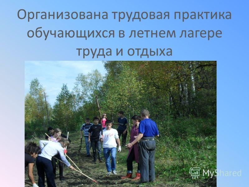 Организована трудовая практика обучающихся в летнем лагере труда и отдыха