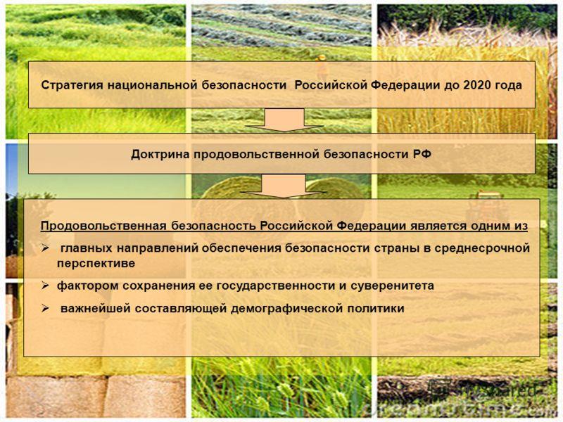 2 Стратегия национальной безопасности Российской Федерации до 2020 года Доктрина продовольственной безопасности РФ Продовольственная безопасность Российской Федерации является одним из главных направлений обеспечения безопасности страны в среднесрочн