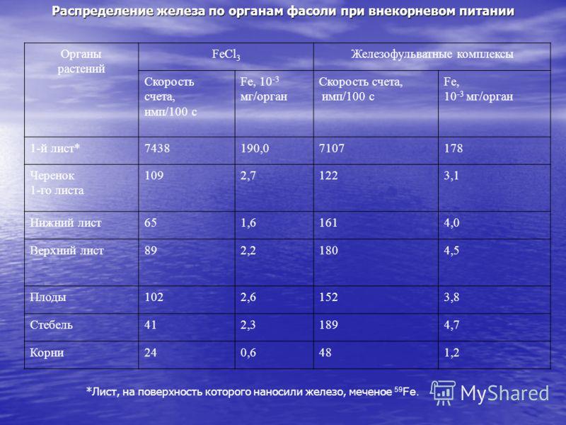 Распределение железа по органам фасоли при внекорневом питании Органы растений FeCl 3 Железофульватные комплексы Скорость счета, имп/100 с Fe, 10 -3 мг/орган Скорость счета, имп/100 с Fe, 10 -3 мг/орган 1-й лист*7438190,07107178 Черенок 1-го листа 10