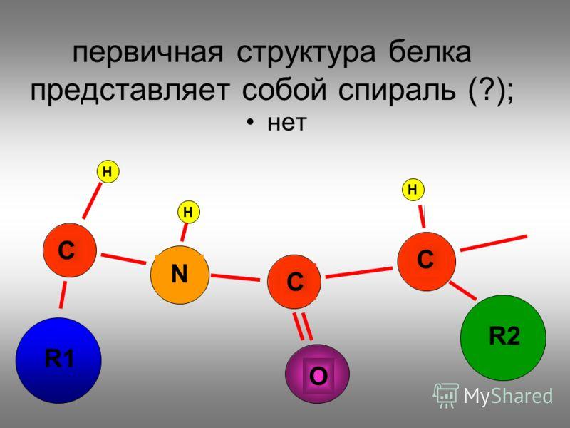 первичная структура белка представляет собой спираль (?); нет N C C C R1 R2 O H H H