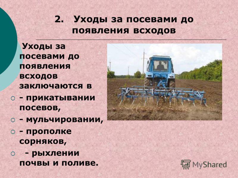 Уходы за посевами до появления всходов заключаются в - прикатывании посевов, - мульчировании, - прополке сорняков, - рыхлении почвы и поливе. 2. Уходы за посевами до появления всходов