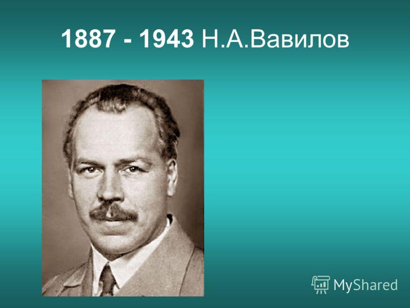 1887 - 1943 Н.А.Вавилов