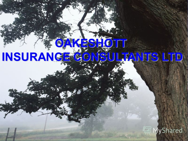 OAKESHOTT INSURANCE CONSULTANTS LTD