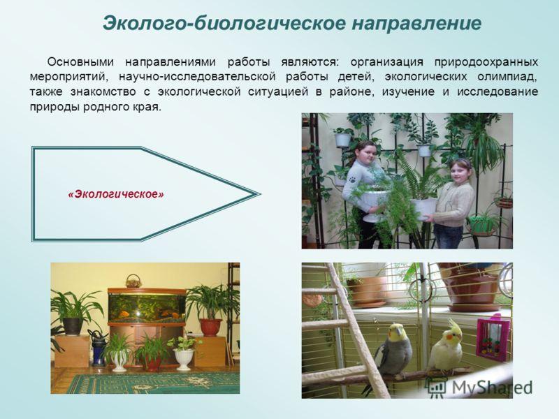 Эколого-биологическое направление «Экологическое» Основными направлениями работы являются: организация природоохранных мероприятий, научно-исследовательской работы детей, экологических олимпиад, также знакомство с экологической ситуацией в районе, из