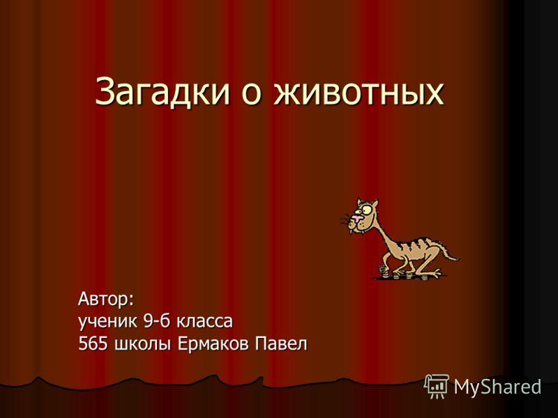 Загадки о животных Автор: ученик 9-б класса 565 школы Ермаков Павел