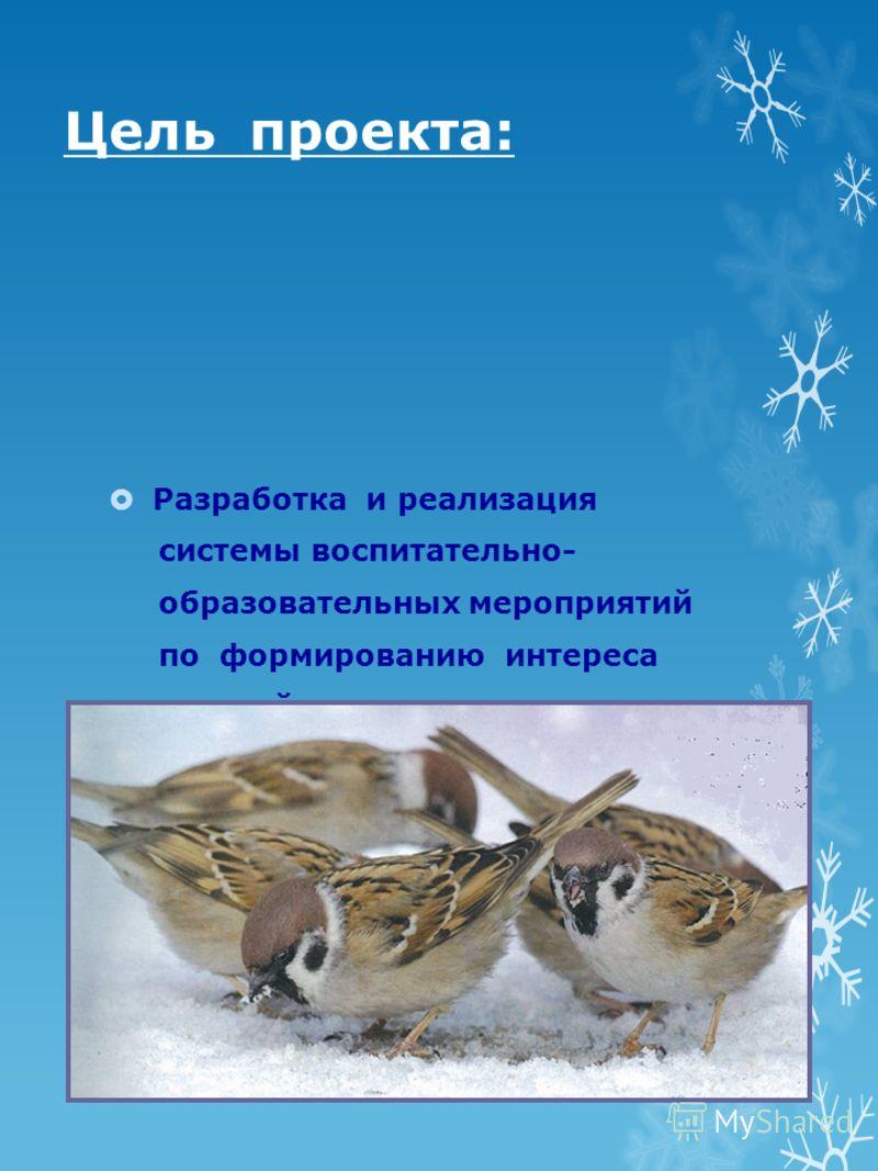 Разработка и реализация системы воспитательно- образовательных мероприятий по формированию интереса у детей к зимующим птицам и желания помочь им в холодное время года Цель проекта: